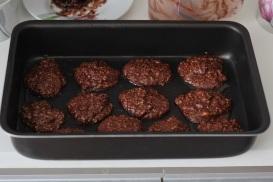 CookiesDressa08